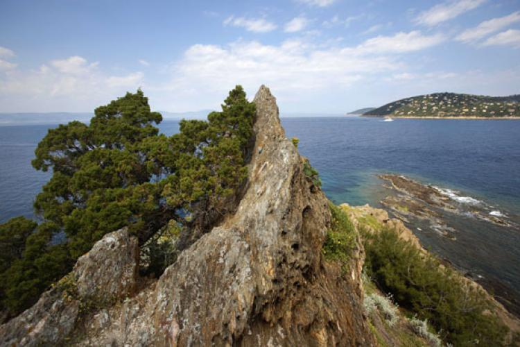 Parc national de Port-Cros © Cristofani / Coeurs de nature / SIPA